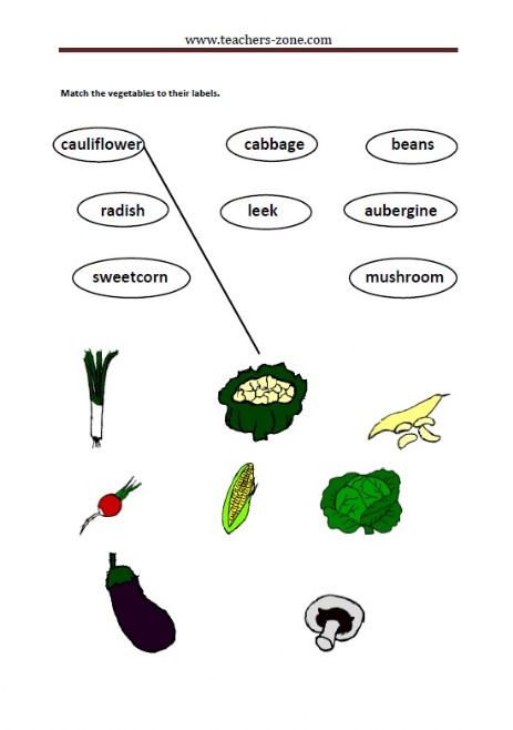 match the vegetables to their labels