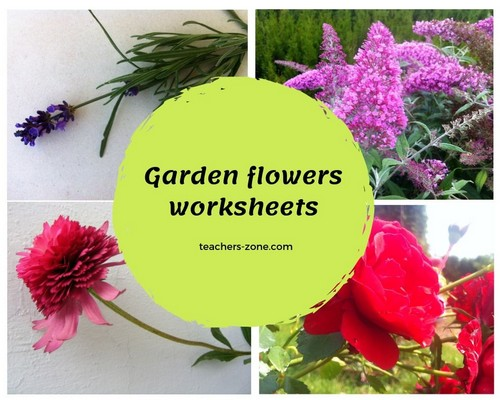 CLIL materials for garden flowers