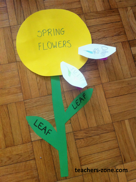 Spring flowers lesson plan
