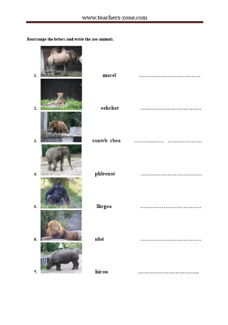 rearrange the letters and write the names of the zoo animals