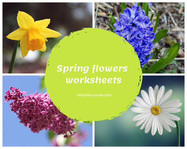 Spring flowers - CLIL resources