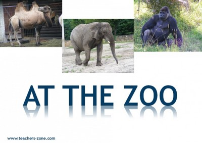 Pictures for zoo animals vocabulary