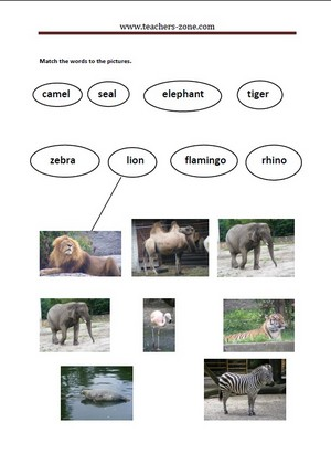 Match the pictures of the zoo animals to their names