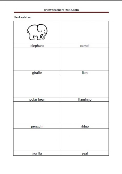 draw the zoo animals