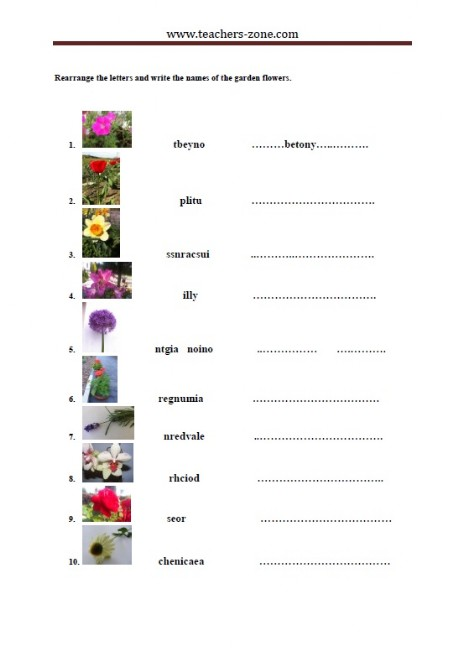 rearrange the letters and write the names of the garden flowers