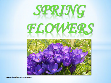 Free flashcards for spring flowers vocabulary