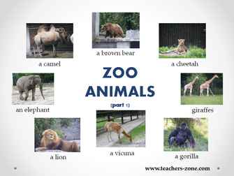 Animals resources